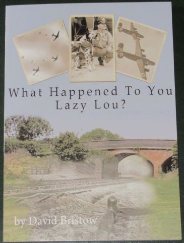 What Happened to You Lazy Lou?, by Davud Bristow